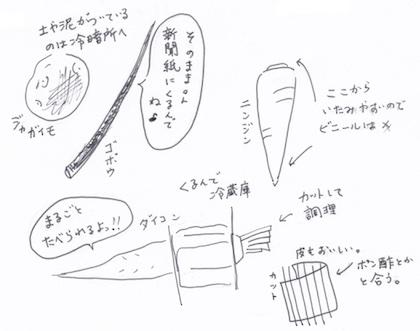 根野菜の収納法イラスト