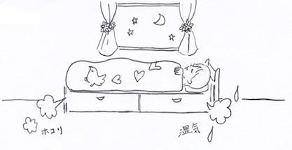 ベッドの湿気・ホコリ・カビを防ぐために収納グッズを工夫しよう