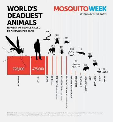 mosquito-killer