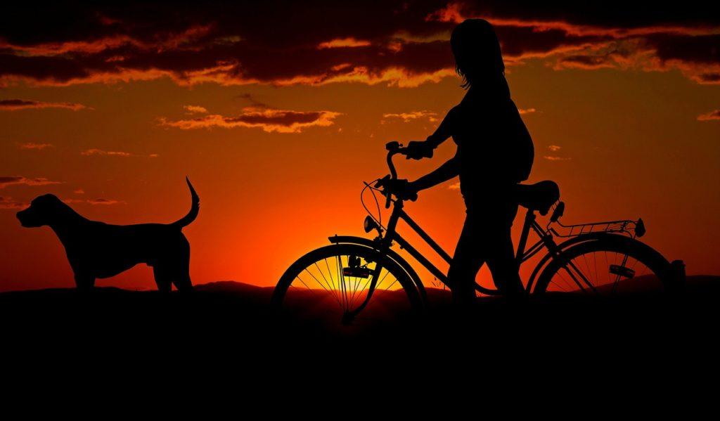 夕暮れの女性と自転車